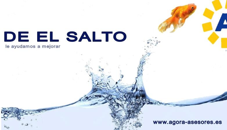 DE-EL-SALTO
